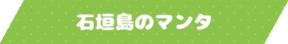 石垣島のマンタ